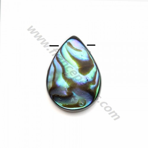 Abalone mother-of-pearl flat drop beads 10x14mm x 4 pcs