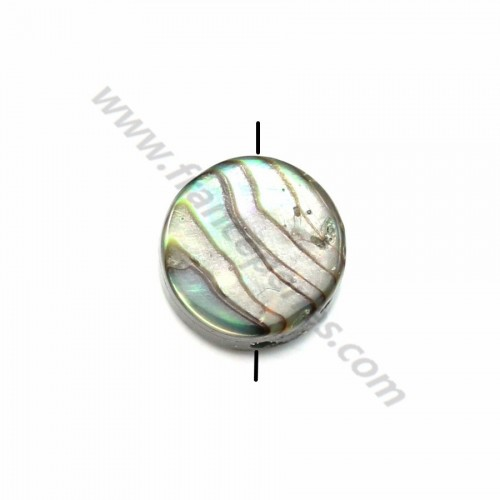 Abalone mother-of-pearl flat round beads 6mm x 10pcs