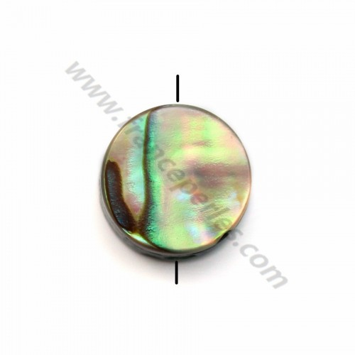 Abalone mother-of-pearl flat round beads 8mm  x 10 pcs