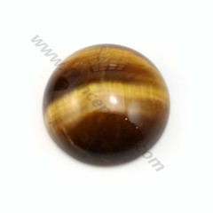 Tiger eye on cabochon, in round shape, 16mm x 2pcs