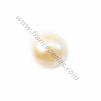 Pearl freshwater demi tron 7mm blanc X 10 pcs