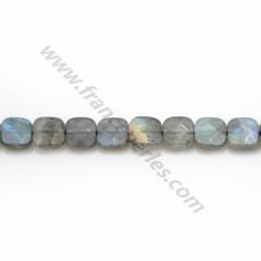 Labradorite grey, in a faceted squared shaped 6mm x 4pcs