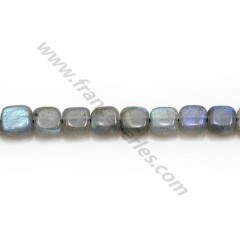 Labradorite grey, in a square shaped 6mm x 6 pcs